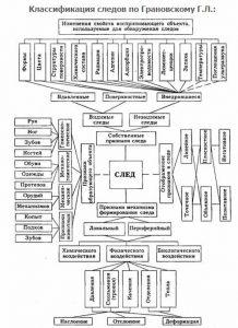 Классификация следов