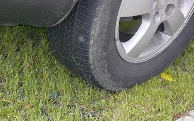Штраф за парковку на газоне в 2019 году: размеры, обжалование