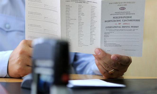 Обычные и международные водительские права: в чём разница?