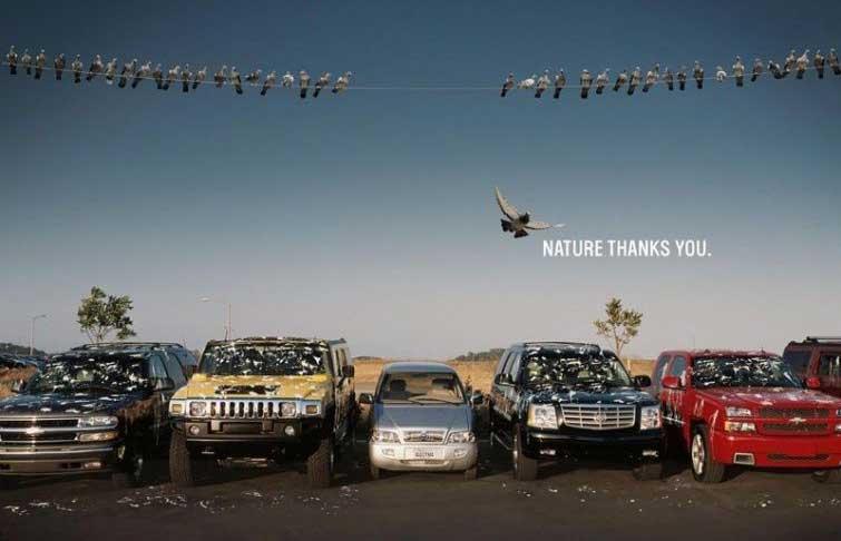 Природа благодарит тебя