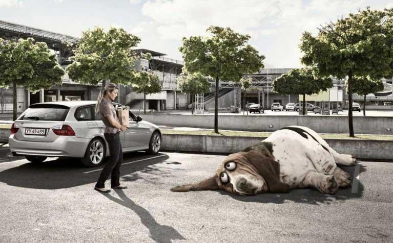 Ленивый зверь на парковке