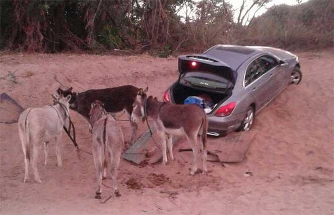 Mercedes-Benz в Африке